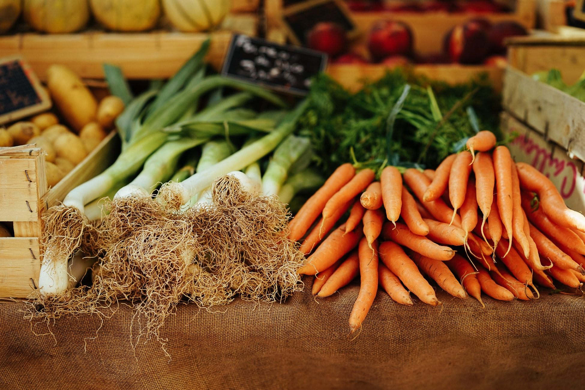 ceapa si morcovi